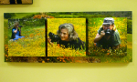 The 3 Photographers: Kay, Nan and Rosemary.