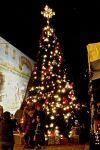 Downtown Gilroy's Christmas Tree